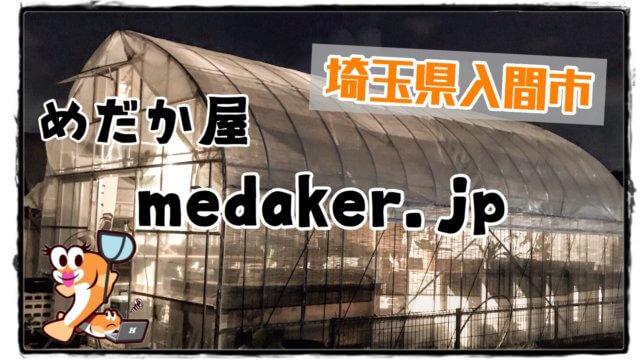 めだか屋medakaer.jpのアイキャッチ