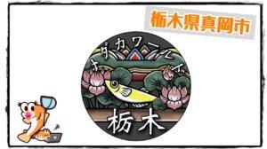 メダカワールド栃木さんのアイキャッチ写真