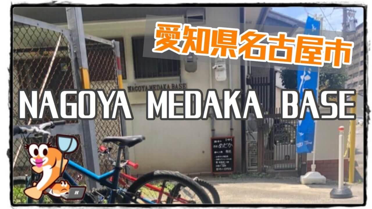名古屋メダカベースのアイキャッチ画像