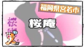 桜庵のアイキャッチ