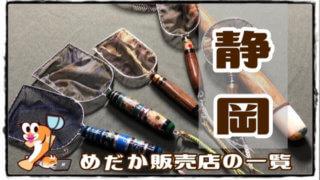 静岡県のメダカ販売店のアイキャッチ