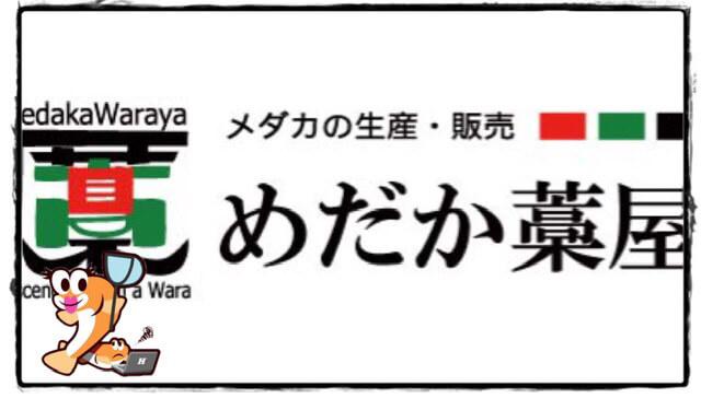 滋賀県のメダカ販売店のアイキャッチ