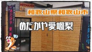 和歌山県のメダカ販売店のアイキャッチ