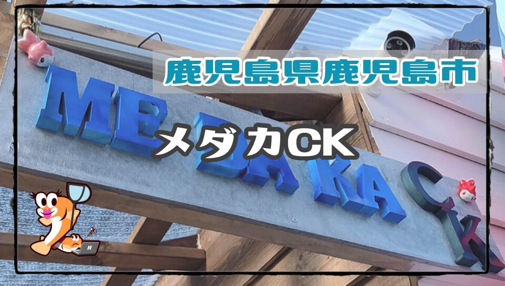 鹿児島県のメダカ販売店のアイキャッチ