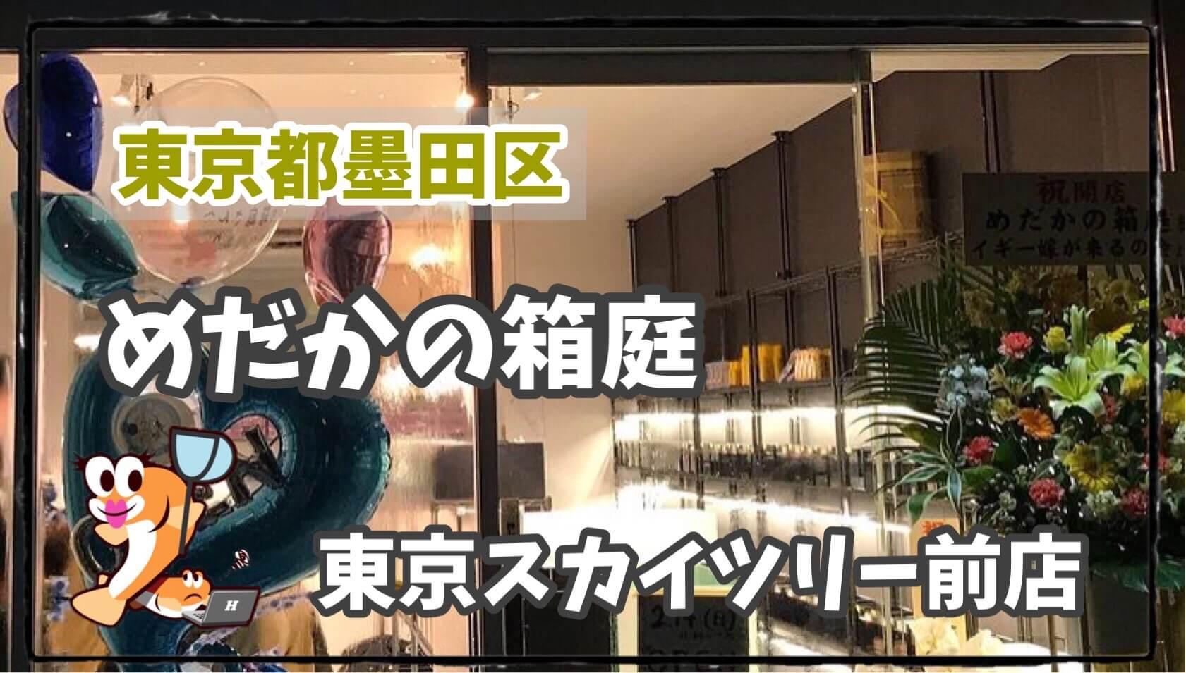 めだかの箱庭東京のアイキャッチ